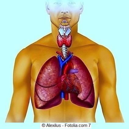 Doenças da respiração